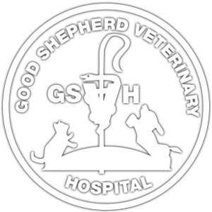 Home Good Shepherd Veterinary Hospital